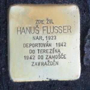 Budějovice FlusserH