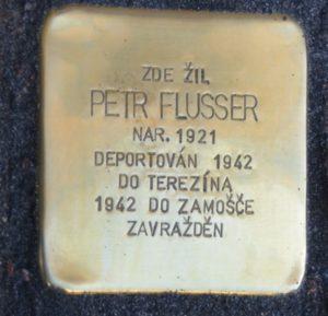 Budějovice FlusserP