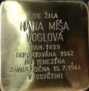 Gorazdova8M