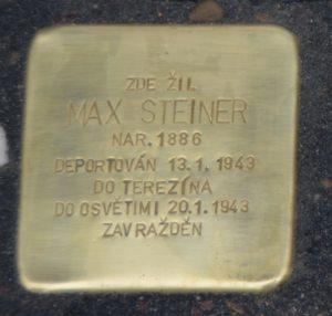 Steiner MAX
