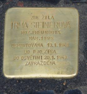 Steinerova Irma