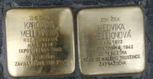 Melionová Praha 7 Kamenická 51